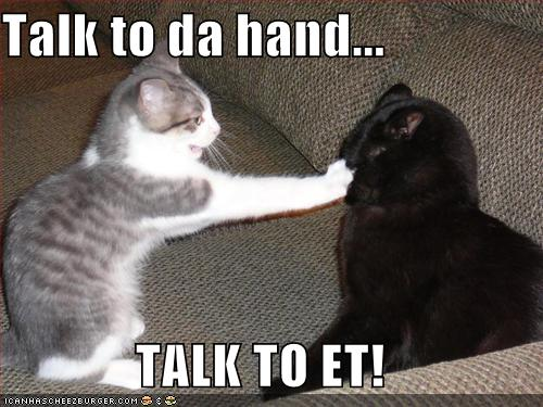 funny-pictures-cat-talk-to-the-hand
