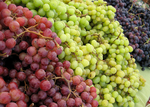 Careful What you eat: Grapes w/ Spiders